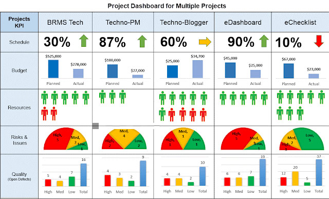 Fig. 2 (c) Multiple Project Status Report